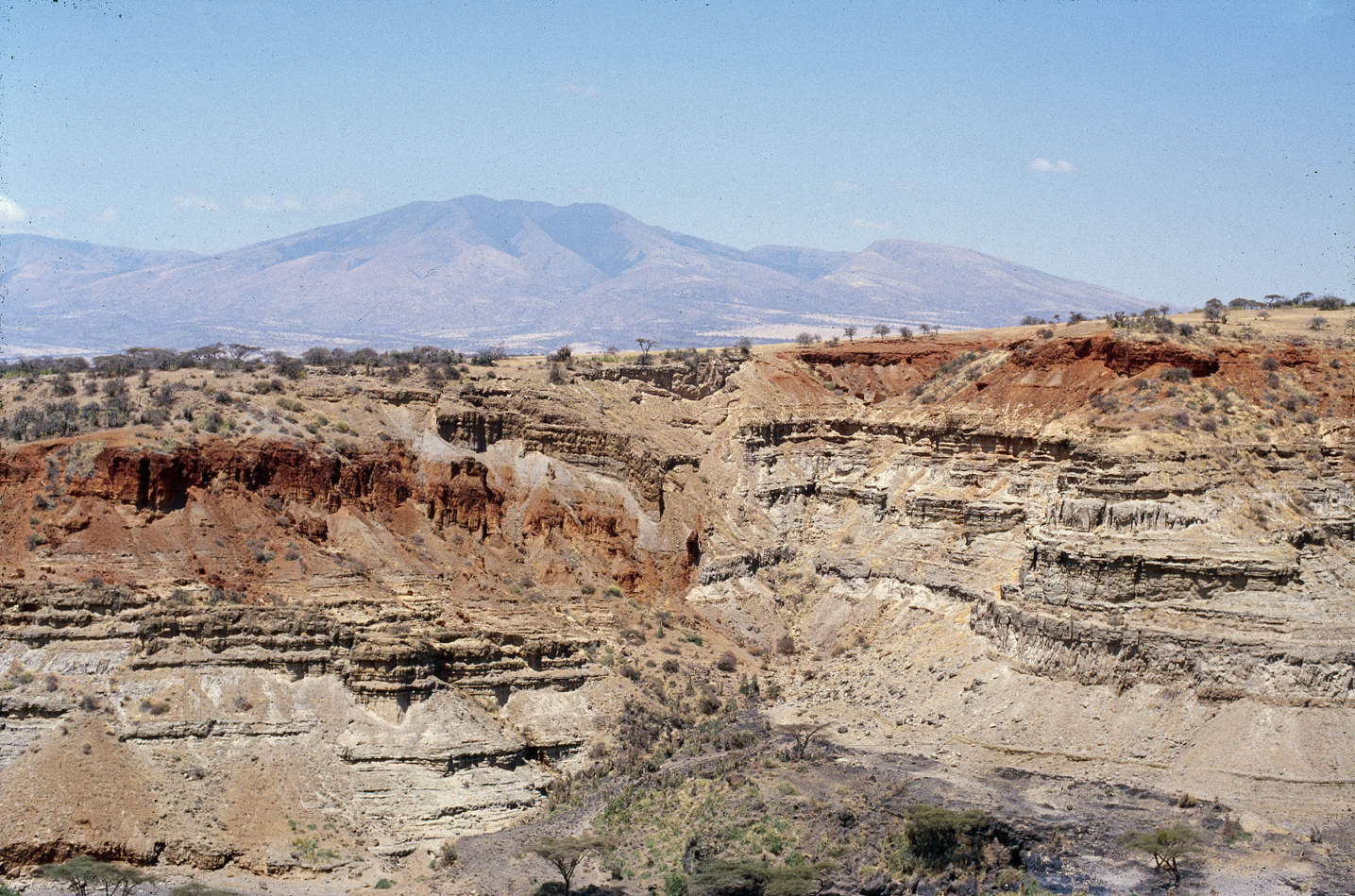 olduvai3rdfault_Deocampo